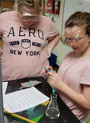 7th Graders Investigated Physical and Chemical Changes