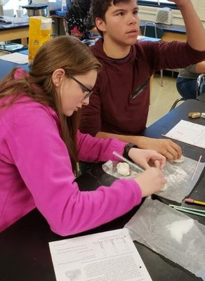 Biology Students Investigated Factors Influencing Rates of Respiration in Yeast
